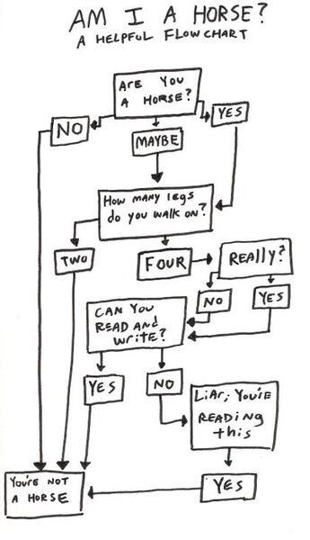 A helpful flow chart – Am I a horse