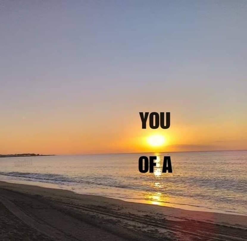 You sun of a beach