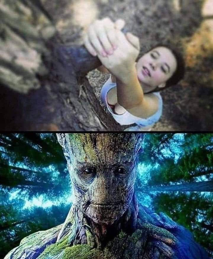 Guardians Of The Galaxy. Groot in a pornhub dimension.