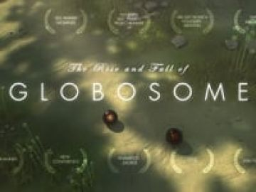 The Rise and Fall of Globosome